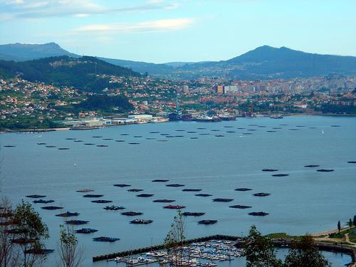 Bateas_na_ría_de_Vigo