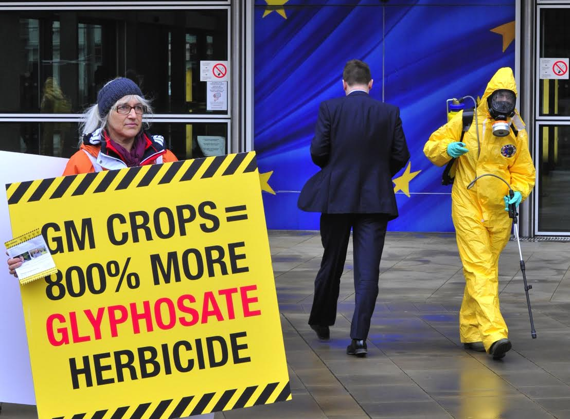 One of the twenty seven activists, one for each EU member state, display a banner reading ìtoxic warningî outside the Commission headquarters on November 7, 2012 at the EU headquarters in Brussels as the EU Commission is considering authorising the cultivation of 26 new genetically modified crops, 19 of which are genetically modified to be tolerant to herbicides ñ mostly glyphosate, the active ingredient in many herbicides sold throughout the world.  AFP PHOTO / GEORGES GOBET
