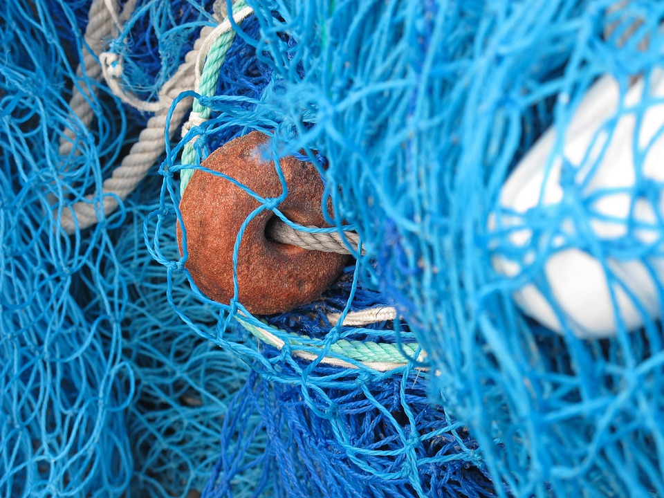 rede pesca