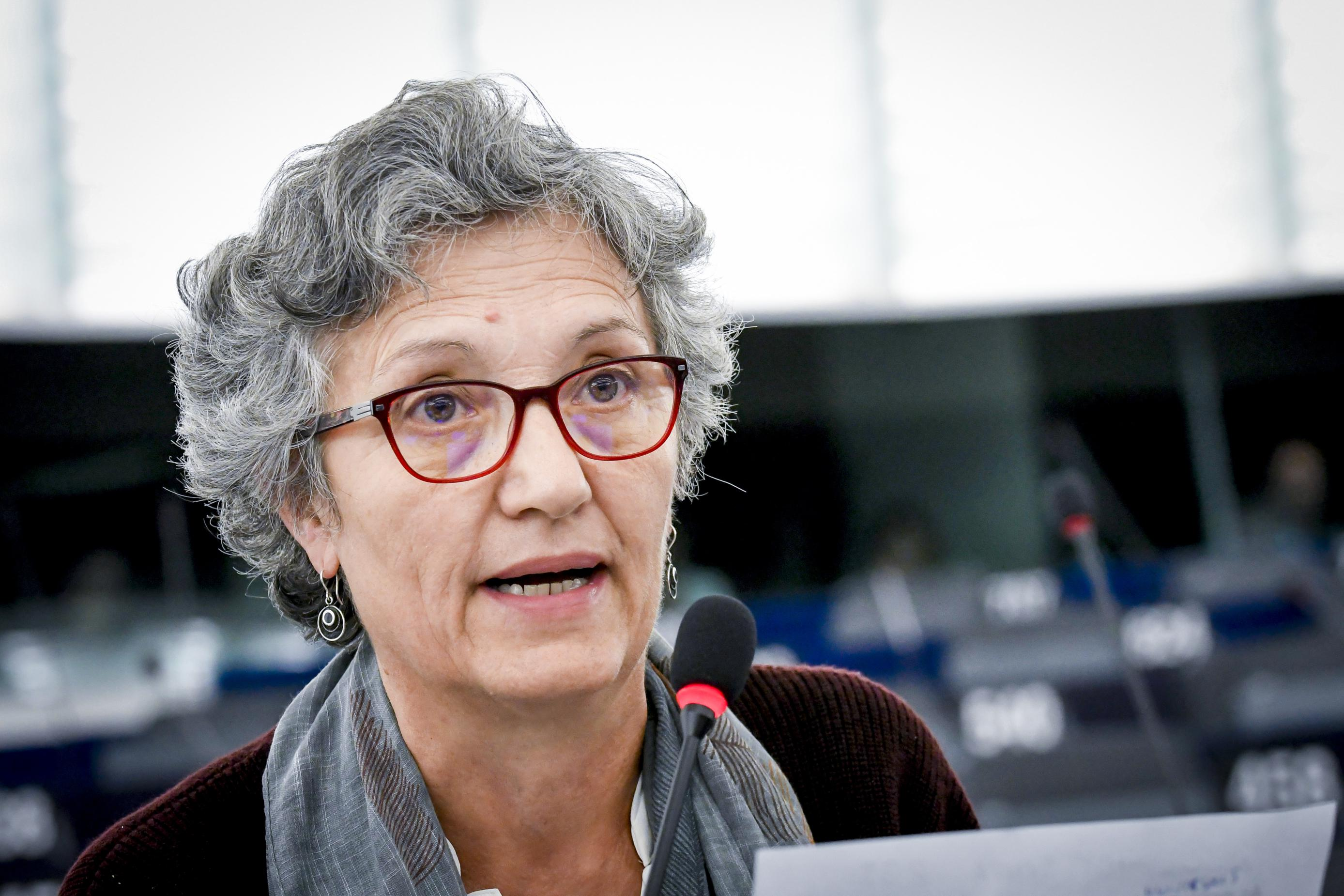 EP plenary session- Minimum income for a fair Europe: a right for citizens