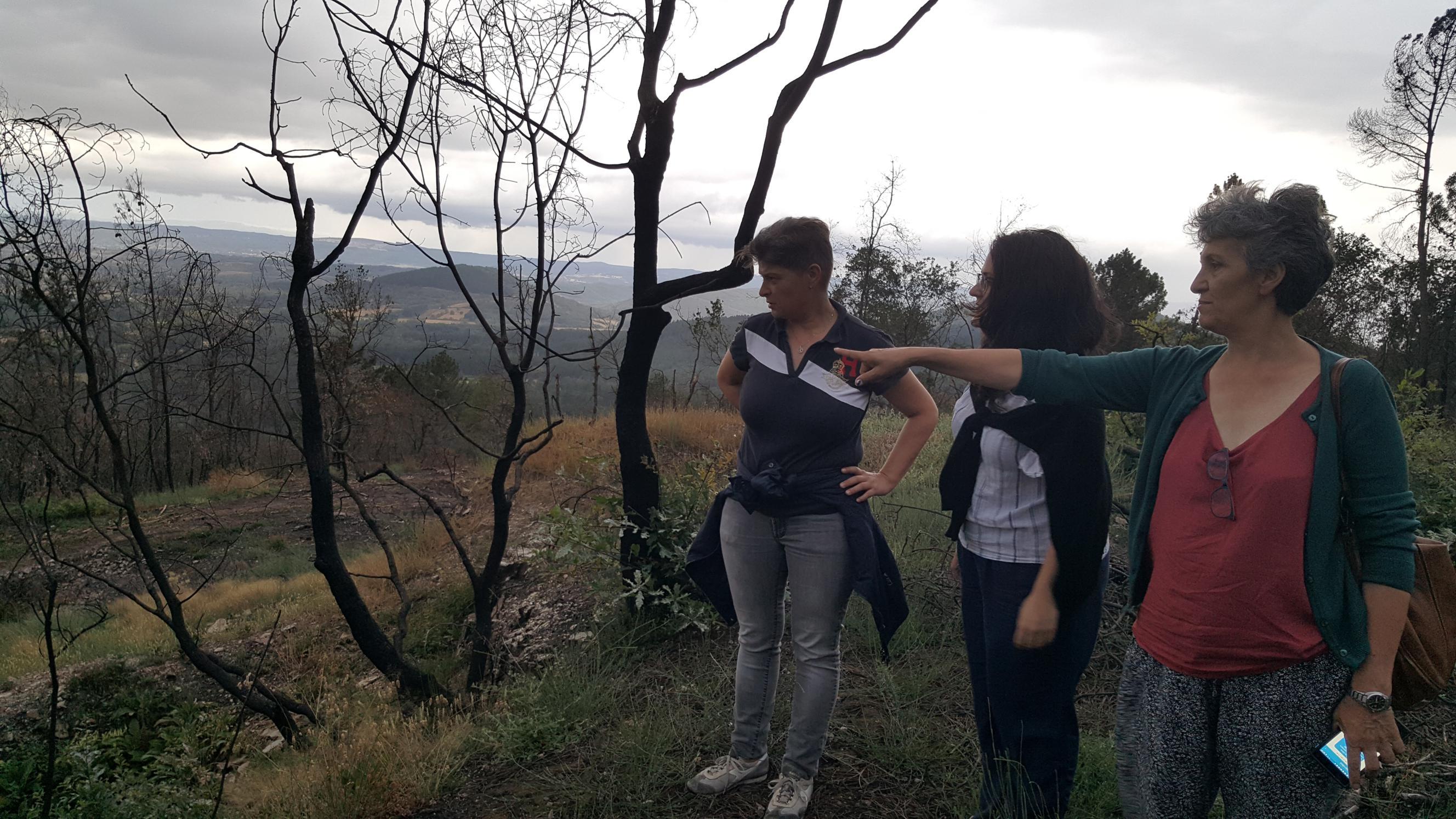 As deputadas, visitando o castro de Chavaga II_2656x1494